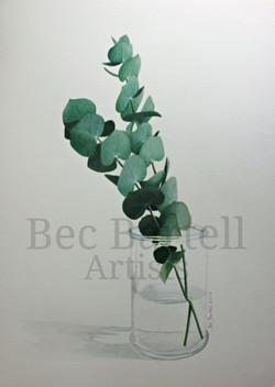 Eucalyptus Vase No1
