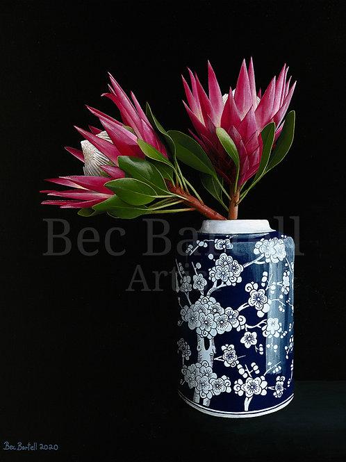 Blue Proteas Fine Art Print A3