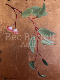 Blossom Drops