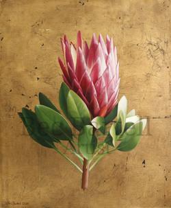 Blooming Crown