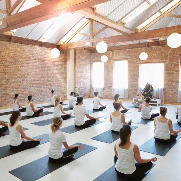 Yoga & Fitness Classes