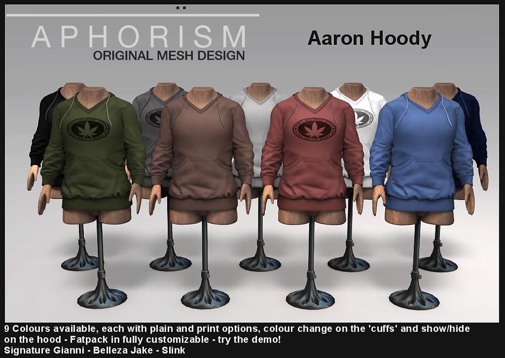 Aphorism aaron hoody second life