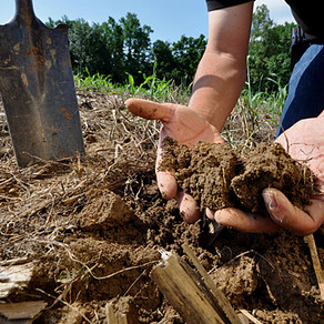 Don't miss the Mid-Atlantic Soil Health Conference