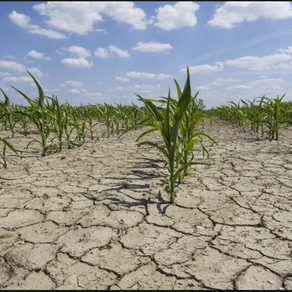 Fighting drought and flood with soil health