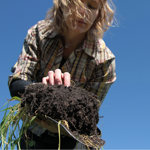 Regenerative Agriculture...Will the term stick?