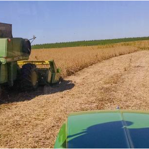 5 ways to make one day worth a week's cover crop growth