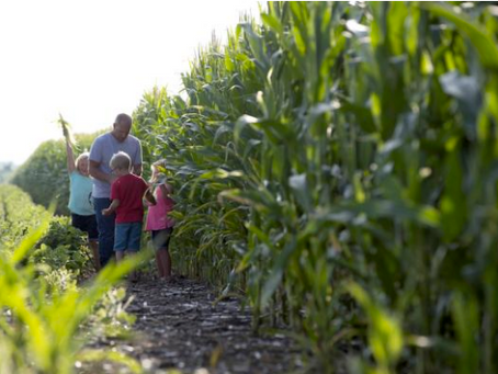 Today's Technology Grows a Better Future for Farm Families