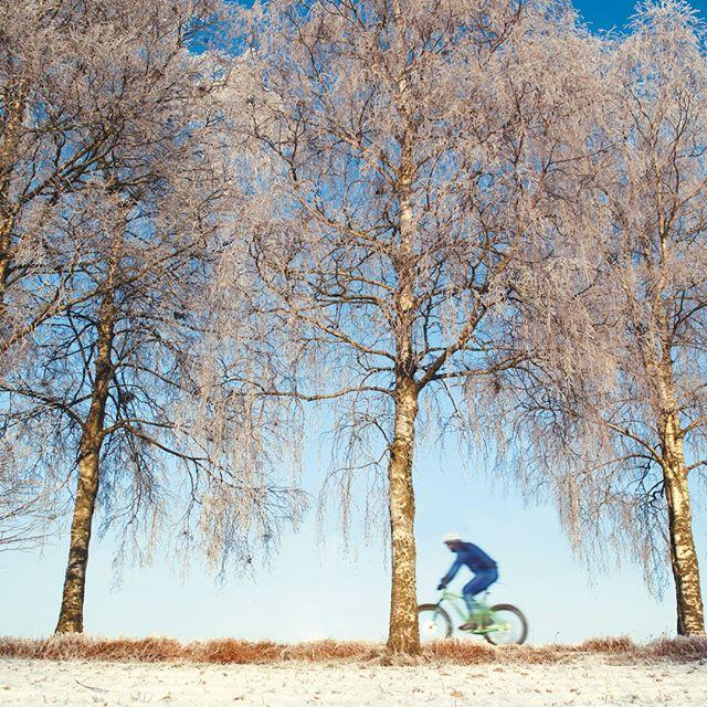#sykkel #fatbike Ikke bare ski i kulda…