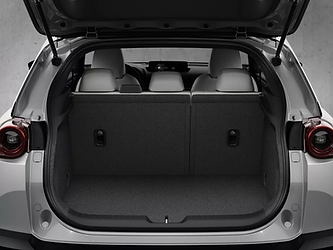 Mazda MX-30 cargo.png