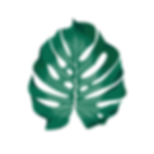 LeafPNG.png