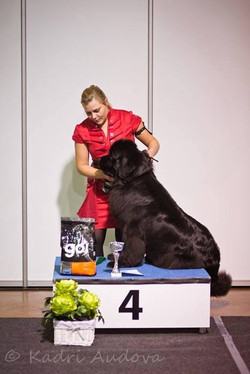 BIG 4 at the National Show in Tartu