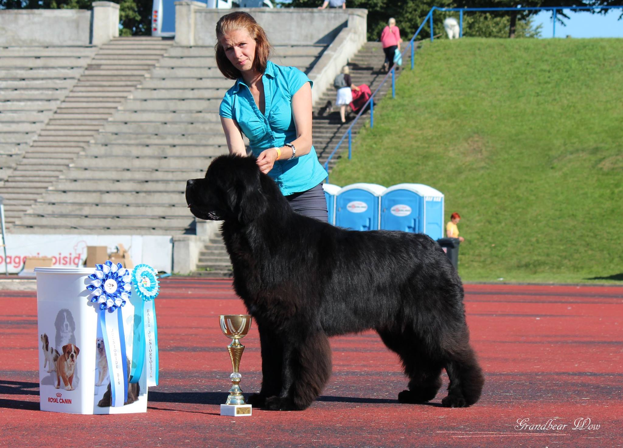 BEST IN SHOW II