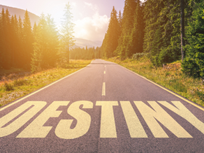 Designing Your Destiny - an unforgettable retreat with Dr. Joe Dispenza