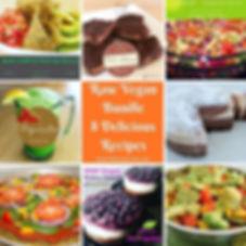 raw-vegan-bundle-8-delicious-recipes ❤️