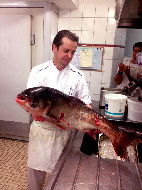 Restaurant-de-poisson-au-martin-bleu-tours