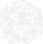 uruoinomori_logoimage_w.png