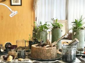 春の竹ポット作り