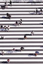 ryoji-iwata-n31JPLu8_Pw-unsplash.jpg