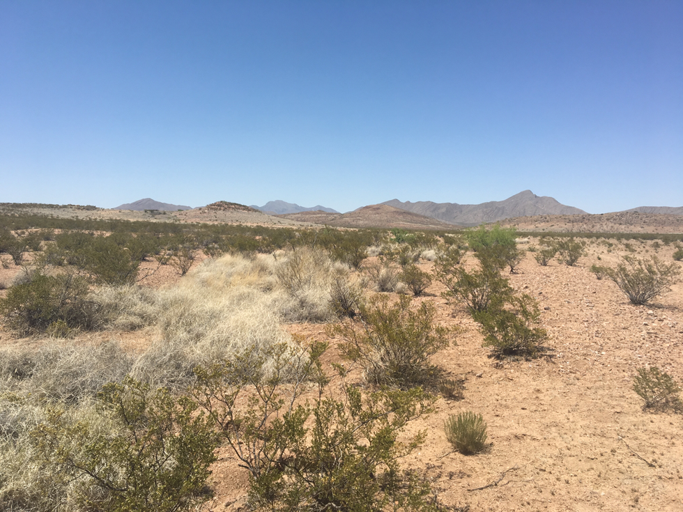 Not Without Peril (Mexican border to Pie Town, New Mexico)