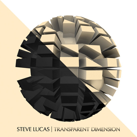 SteveLucas_TransparentDimension_Graphic.