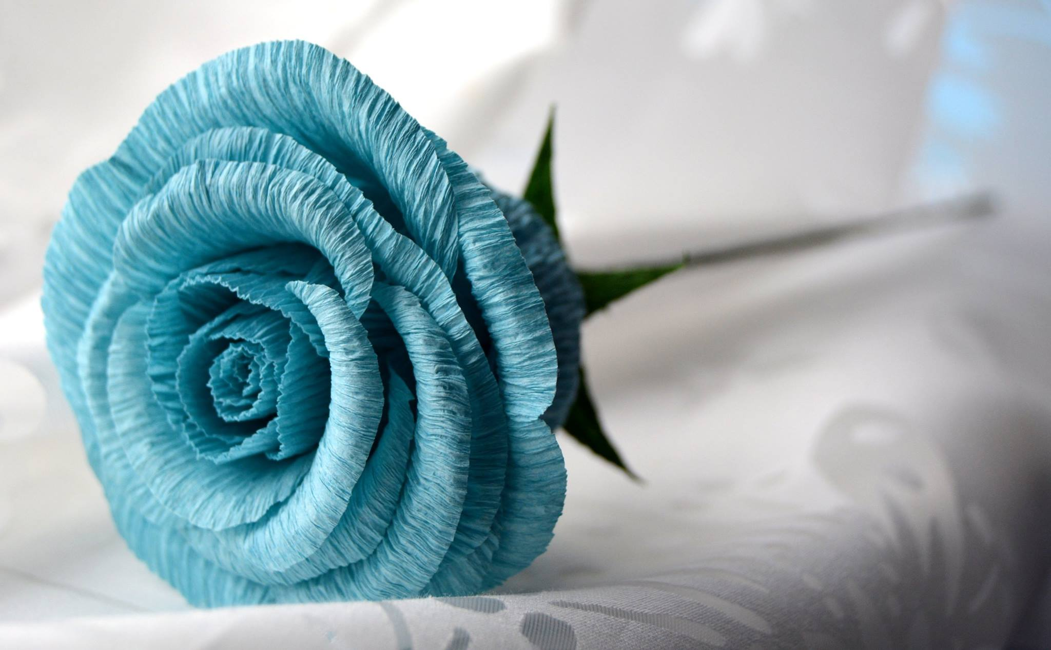 Single stem blue rose