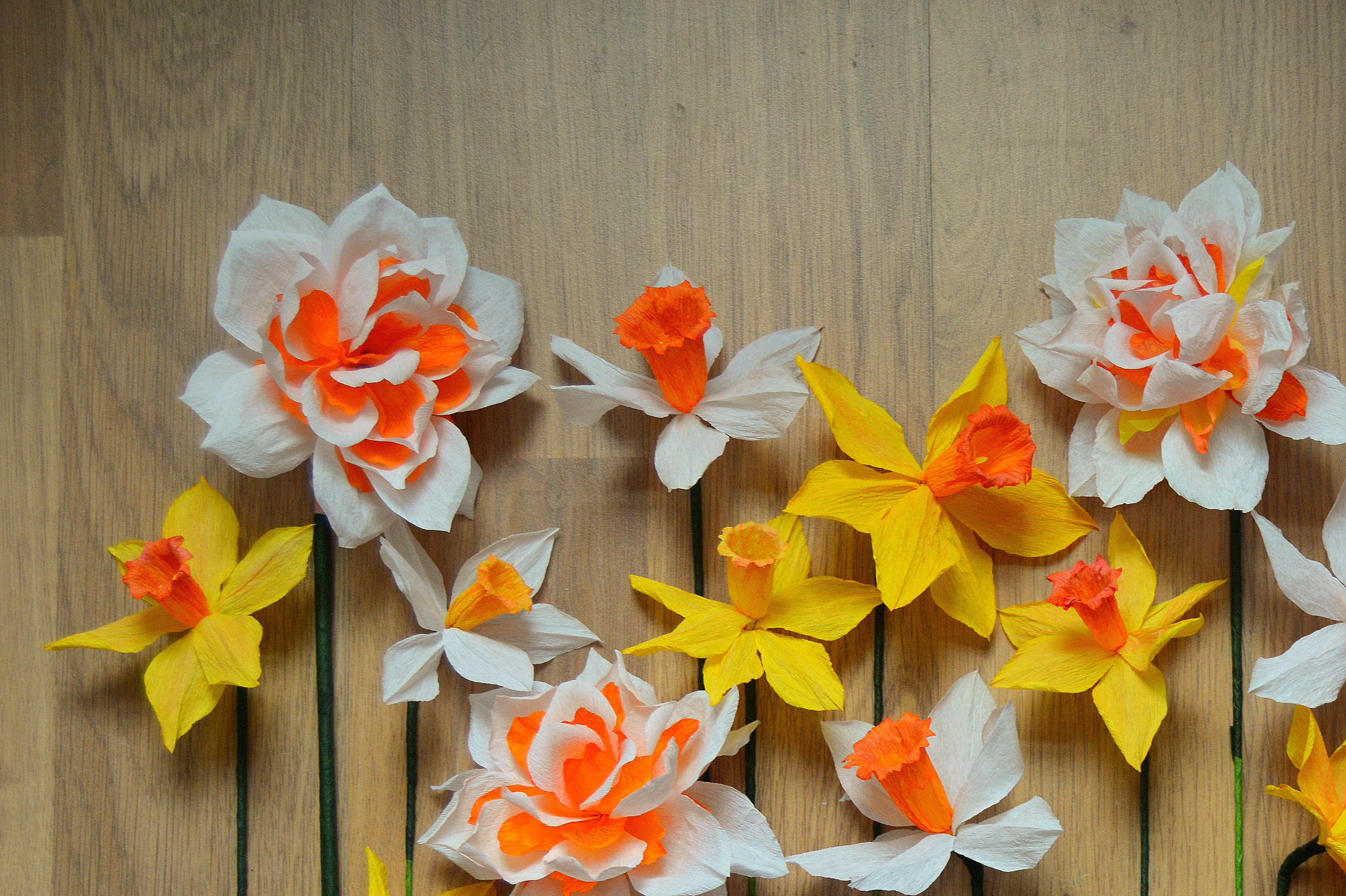 A mixture of paper daffodils