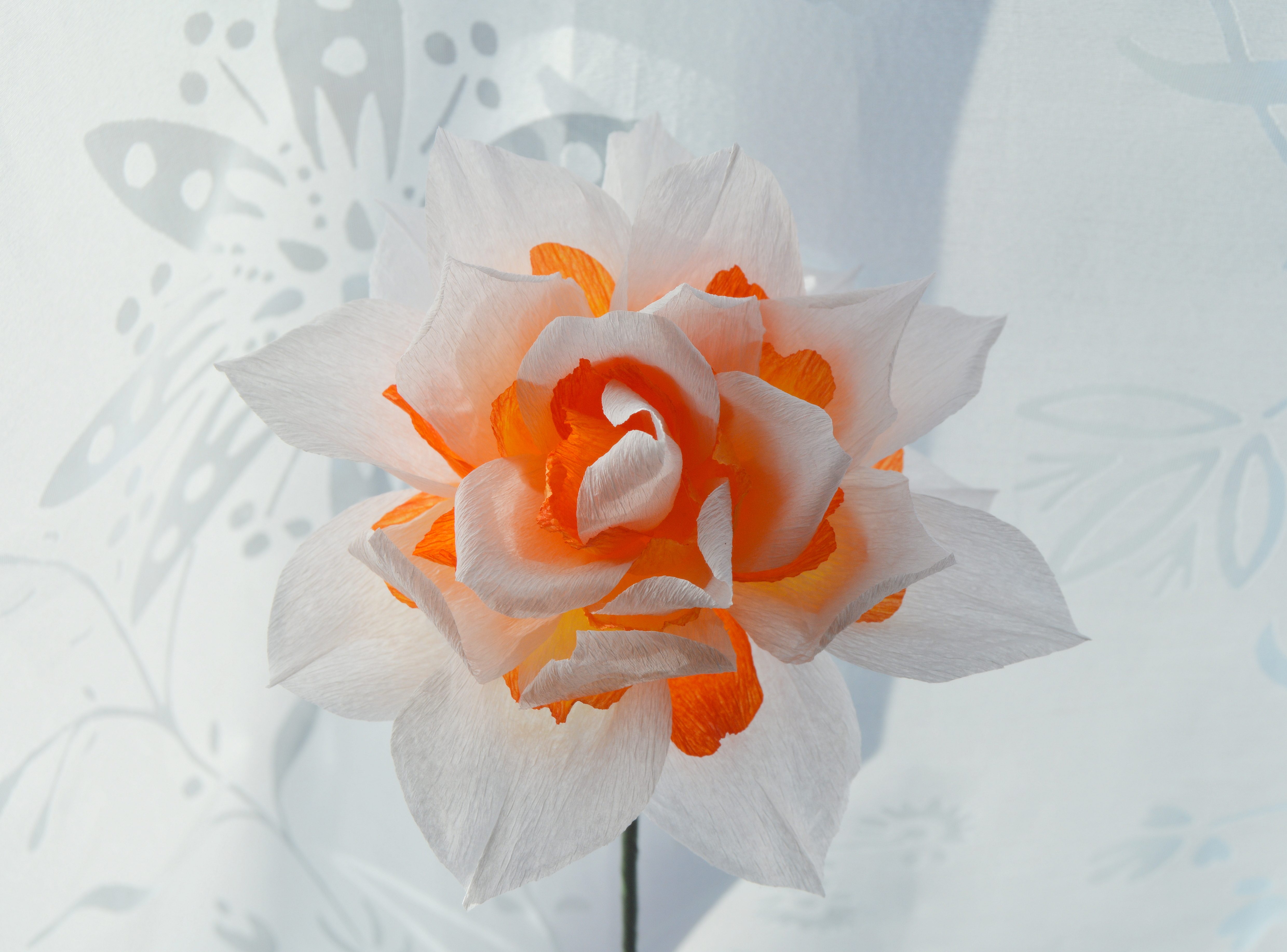 Paper double daffodil