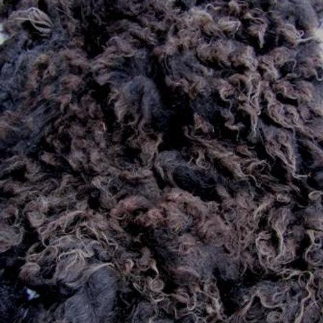 Icelandic Black Fleece  2.3 lb