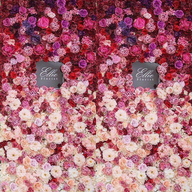 Flower wall 🌸 👰🏻🤵🏻wedding decoratio