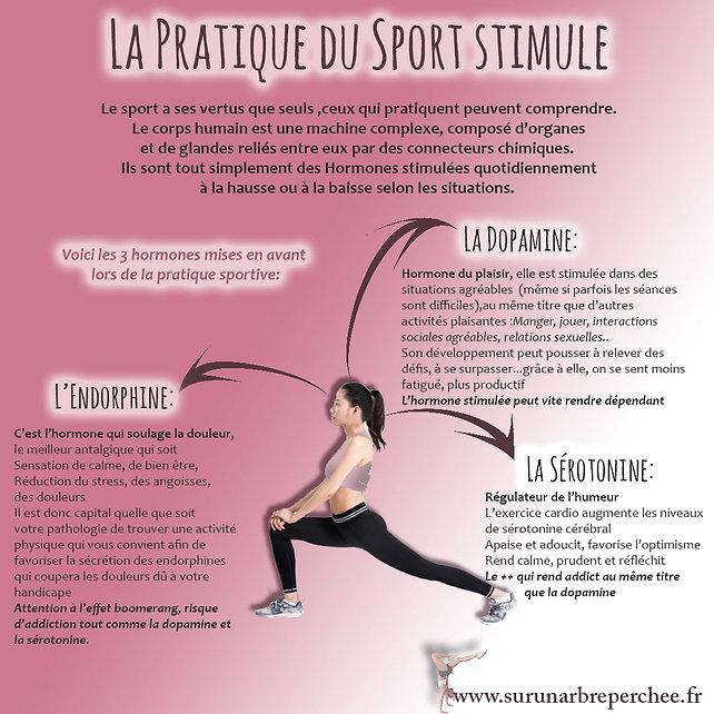 La pratique du sport stimule.jpg