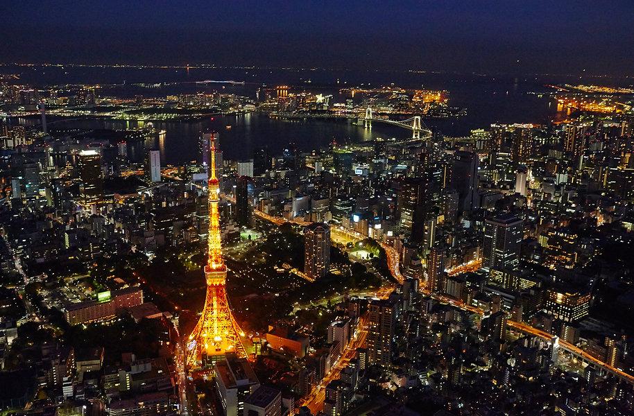 Aerial View (4).jpg