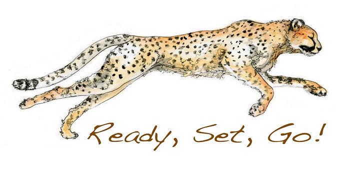 monahan.web.cheetah.shop.jpg