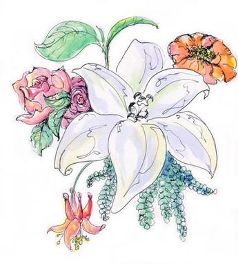 monahan.botanical.sketching.class.1.jpeg