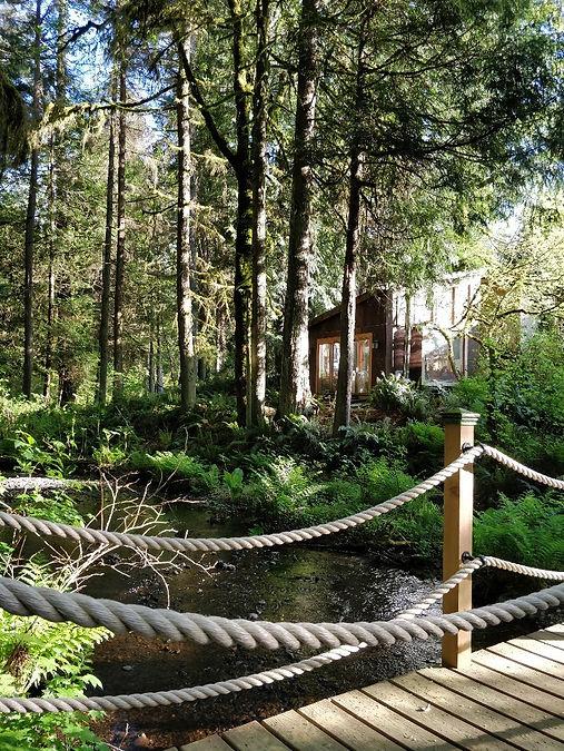 monahan studio woods.jpg