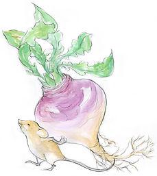 mouse.radish.jpg