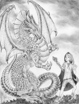 Nicole Monahan Wizard Boy And The Dragon