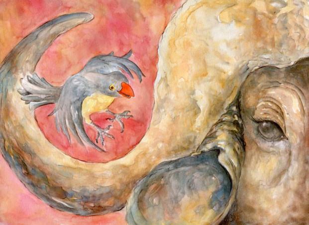 Nicole Monahan African Ox Pecker