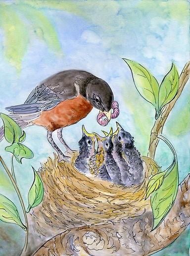robin eatinglg.jpg