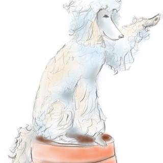 poodle.dog.single.jpg