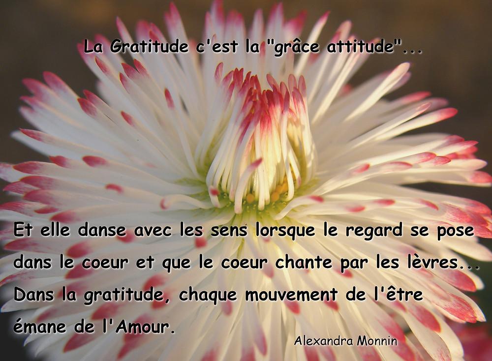 La gratitude qui ouvre les coeurs et enveloppe les corps de douceur...