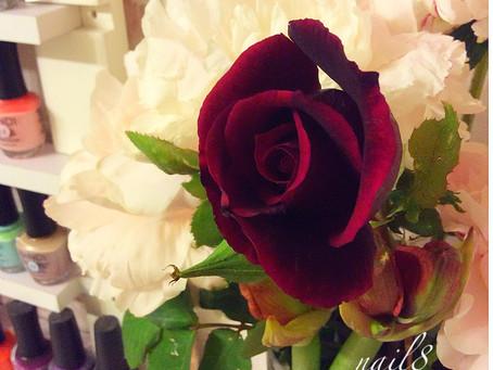 芍薬&バラ