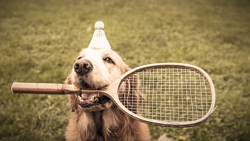 wp1852975-badminton-wallpapers_edited.jpg