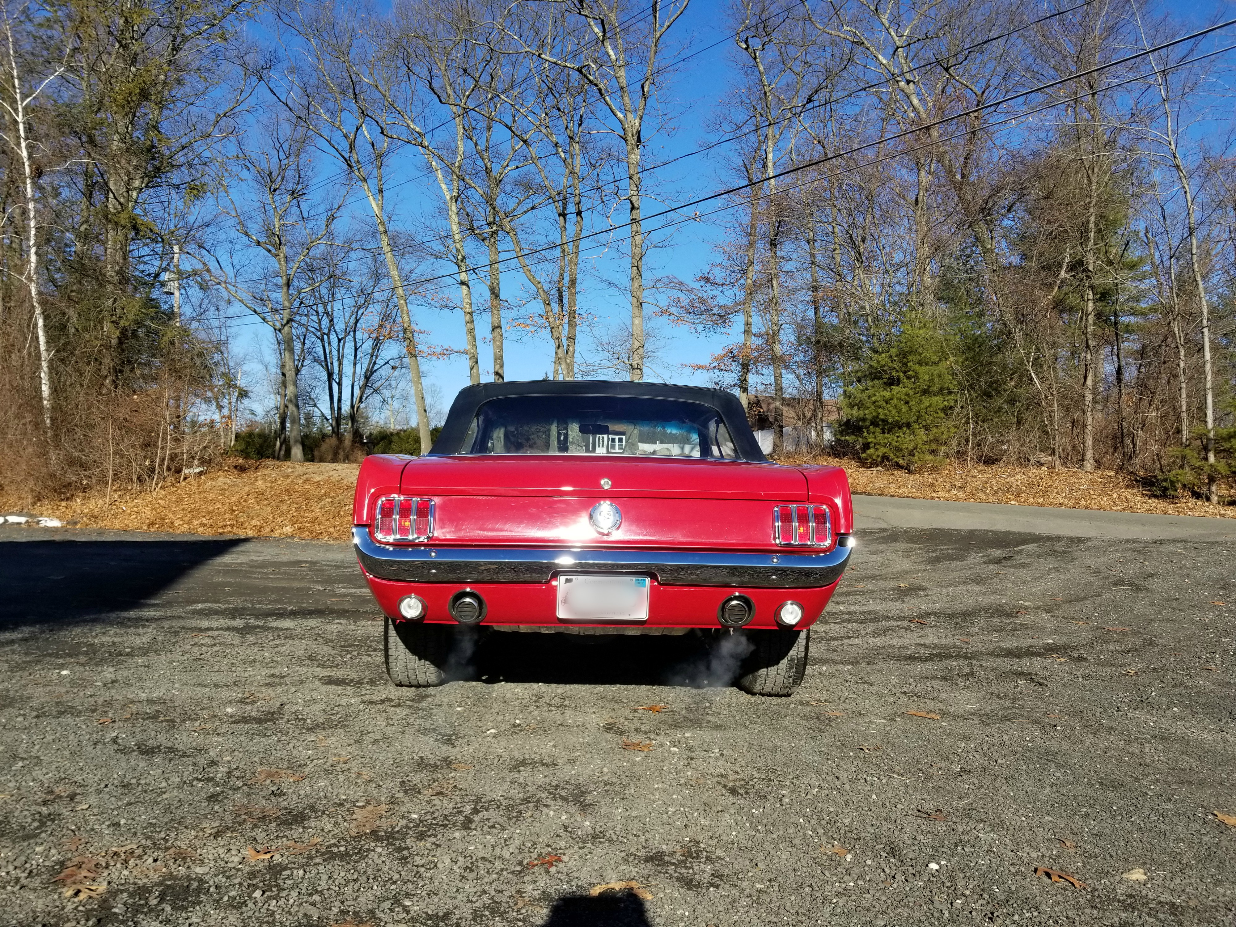 1966 Mustang Rear View