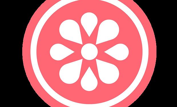 Lemonade Logo official.png