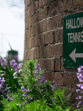 Hallow Green 8.jpg
