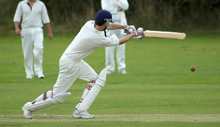 Cricket Game_edited.jpg