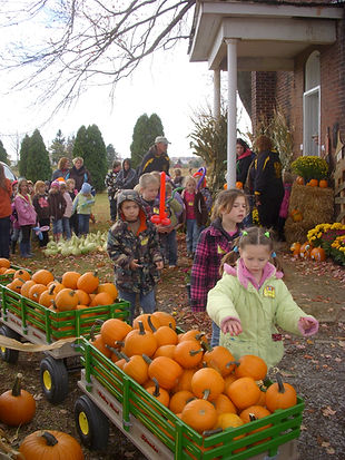 School Field Trips, Corn Maze, Pumpkins