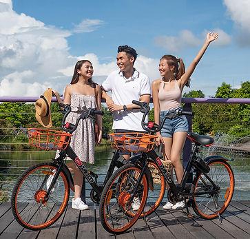 SG Bike (4).jpg