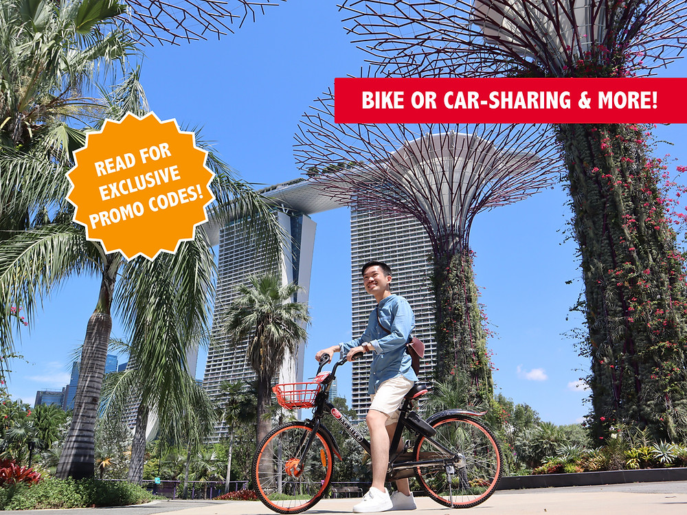 Guy cycling at Gardens by the Bay
