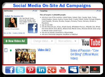 Social Media On-Site Ad Campaigns